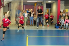 flash teams 2017 afdr-mb-13
